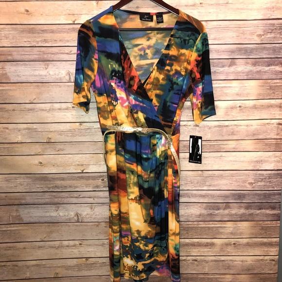 77bc59e66f1 Stylish Colorful Wrap style dress size Large. NWT. Nina Leonard